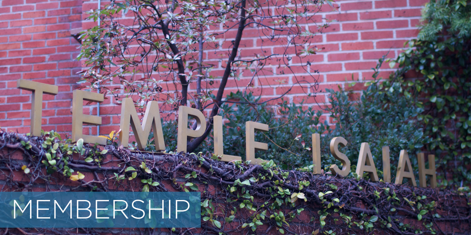 /home/templeis/public_html/images/header_image/1445448329header_image01_membership.jpg.