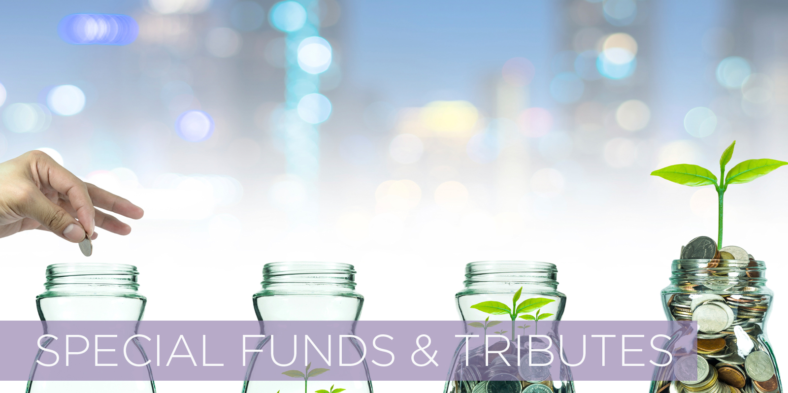 /home/templeis/public_html/images/header_image/1501872151header_imageSpecial Funds and Tributes.jpg.