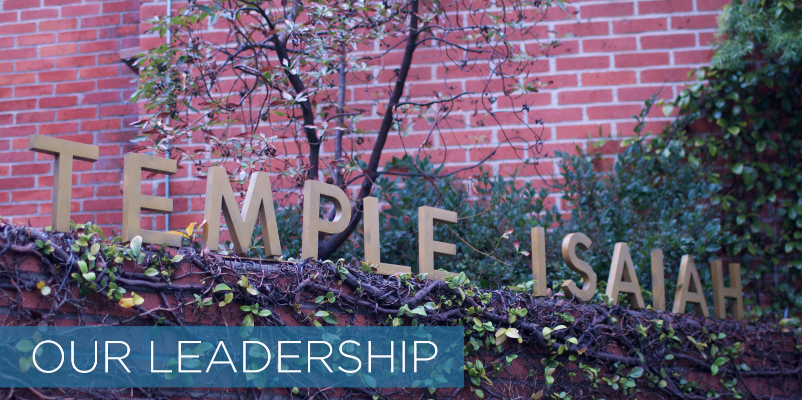 /home/templeis/public_html/images/header_image/1552500627header_image1452711134header_imageour leadership.jpg.